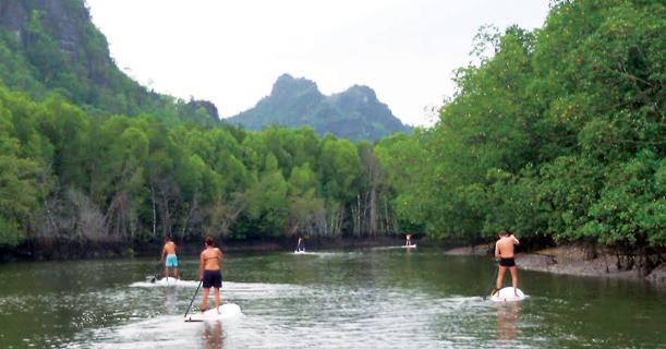 Stand Up Paddle At The Kilim Mangroves