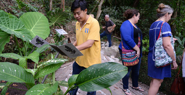 The debut of Penang's very own Poison Garden