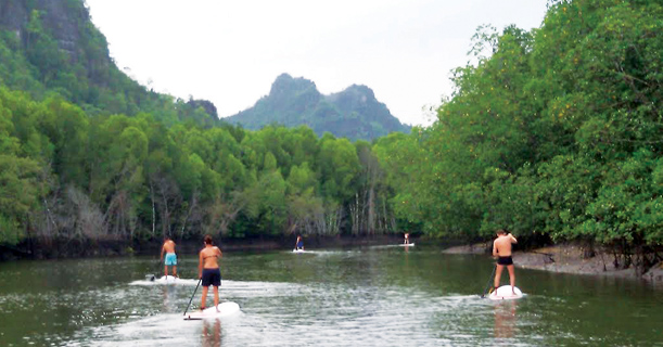 Stand Up Paddle At The Kilim Mangroves